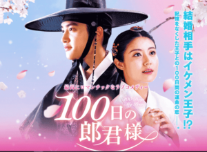 100 Days My Prince Video