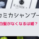 Kamika shampoo lie