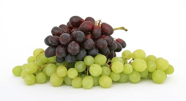 Grape season and nutrition